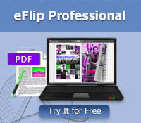 PageFlip PDF to Flash Professional