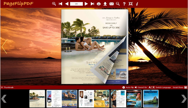 Coconut Palm Flip Book Theme