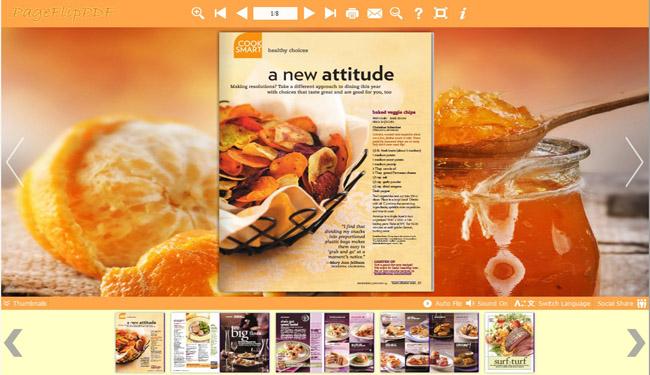Windows 7 PDF to Flash templates of Orange style 1.0 full