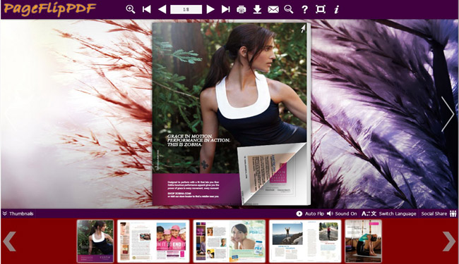 Vigor Theme for Flipbook Designing